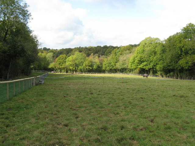 New fencing for horse fields