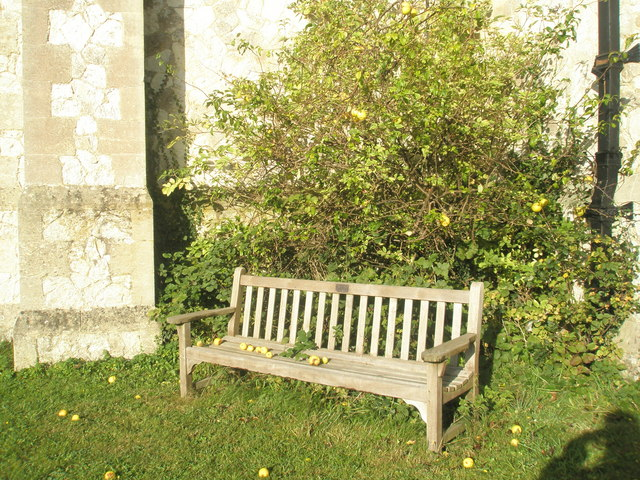 Seat in the churchyard at St John the Baptist, Greatham