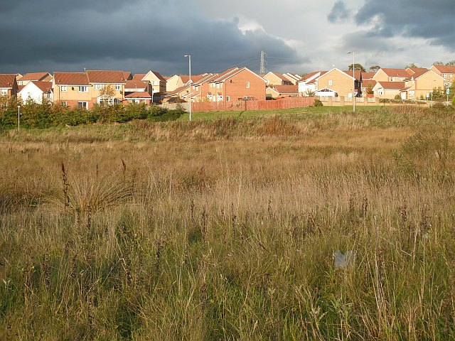 New houses and undeveloped land,  Chapelhall