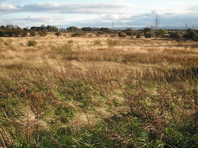 Land awaiting development