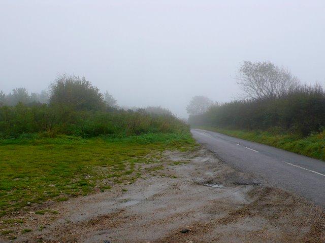 Misty day on Bulbarrow
