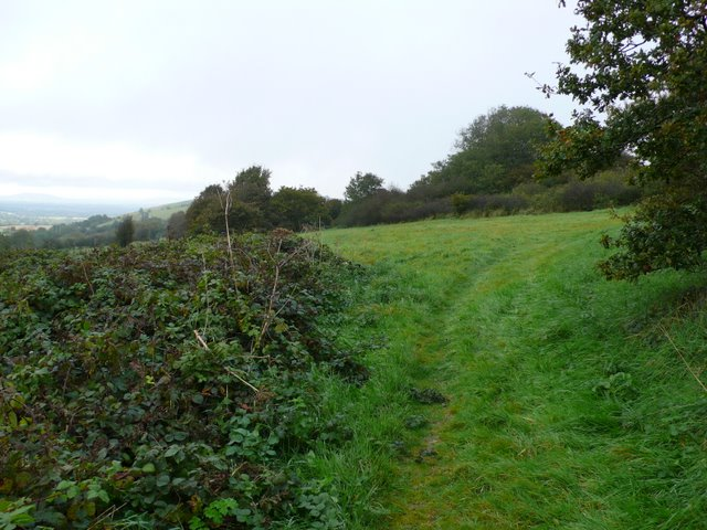 Ibberton Hill