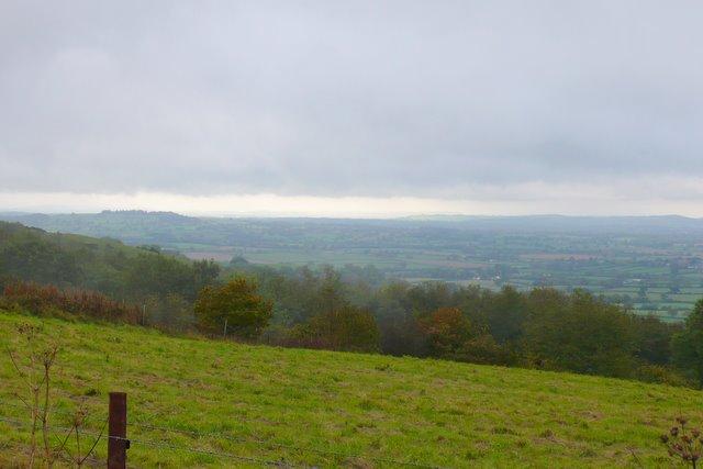 Woolland Hill