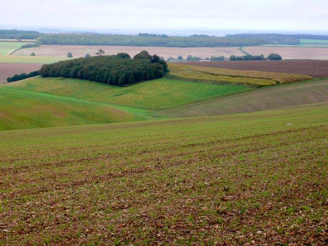 Farmland on Houghton North Down