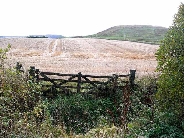 Field of stubble at Kirkhope