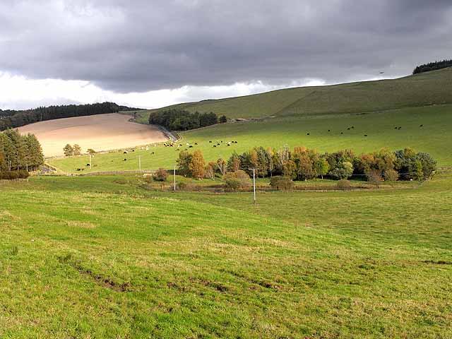 Fields near Hutlerburn Farm