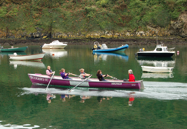Gig (longboat) racing at Solva (4)