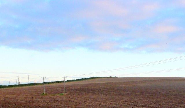 West Down near Winterborne Kingston