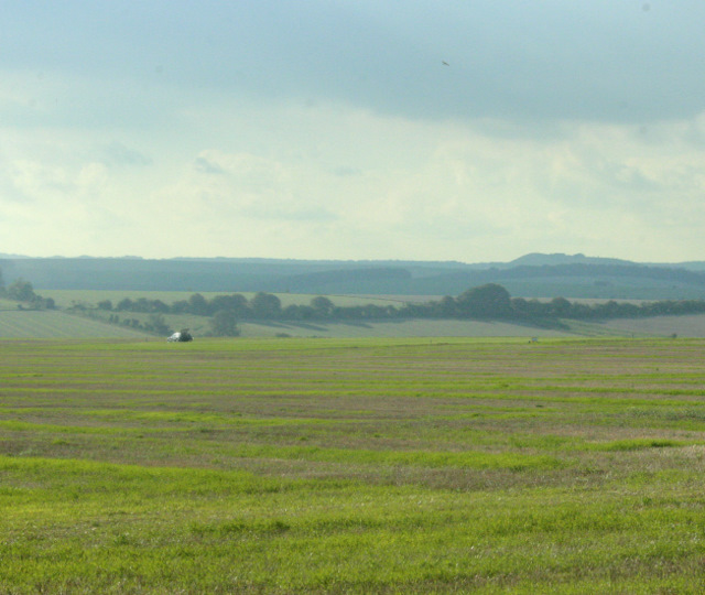 2009 : West from Hindon Road on Pen Hill