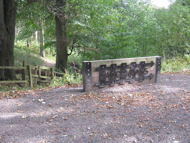 Artwork in Holywell Dene Northumberland
