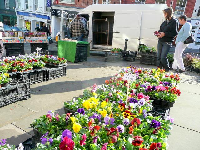 The Plants Man, Ross-on-Wye market