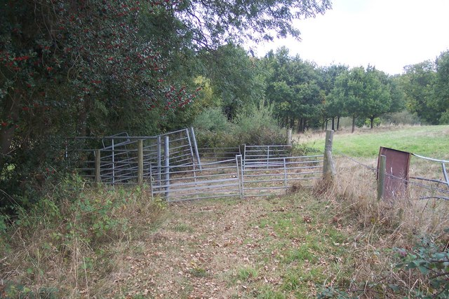 Double gates on a footpath, near St. Michaels