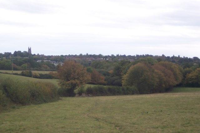 View of Tenterden, from near Grange Road