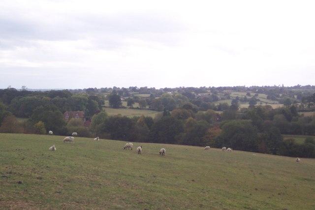 View towards Goodshill House Farm