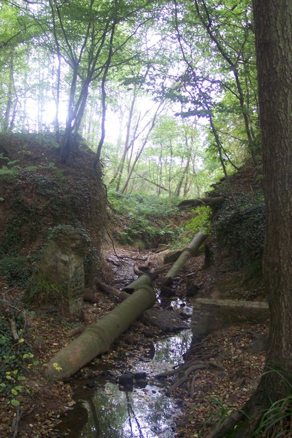 Breach Pond ditch