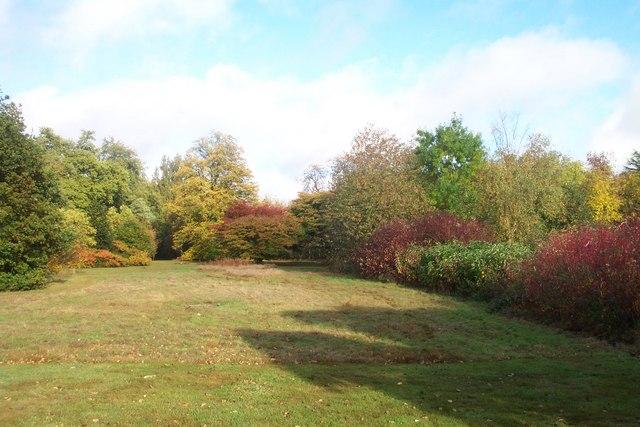 Harris Garden Meadow