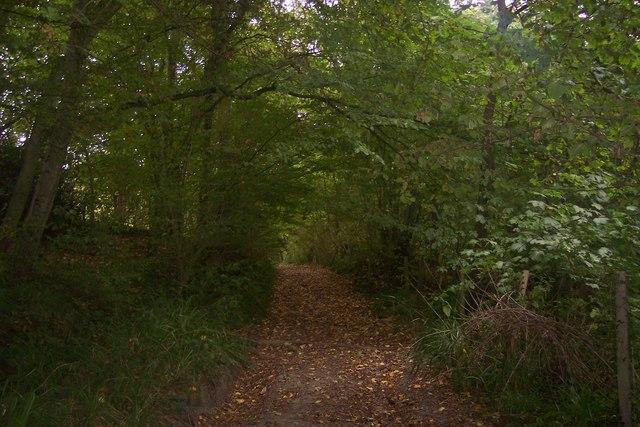 Millpond Lane Byway