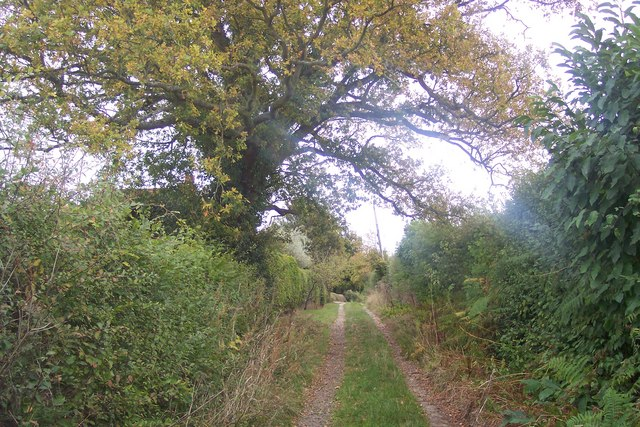 Millpond Lane Byway near Honour Farm