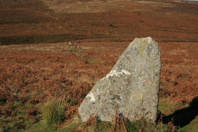 Challacombe standing stone