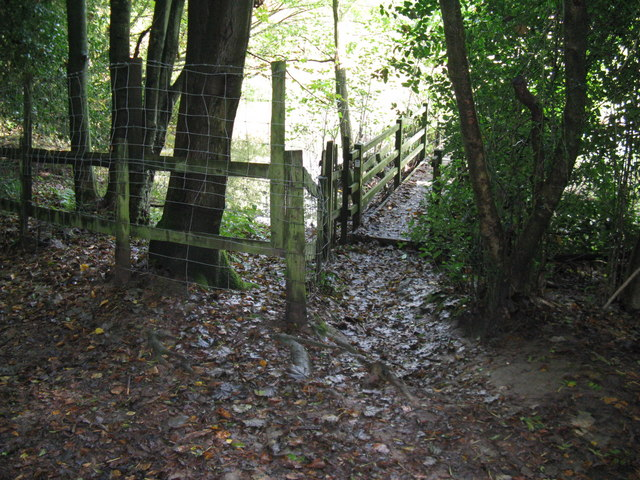 Footbridge over unknown stream in unknown wood