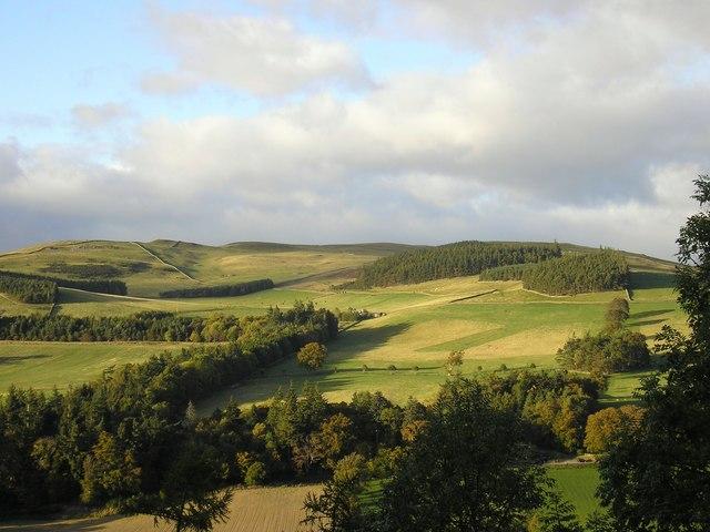 Calfshaw Burn Strip from Raelees Wood