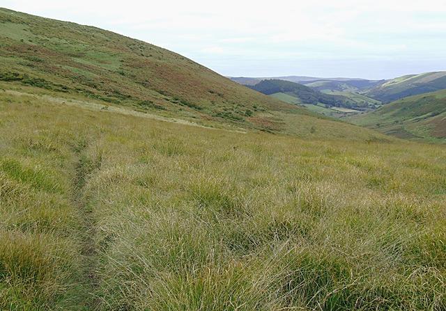 Moorland south of Cefn Fannog, Powys