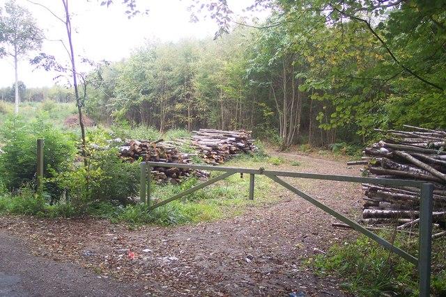 Gate on Bugglesden Road