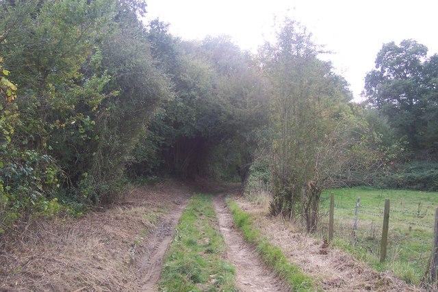 Footpath to Goldwell Farm