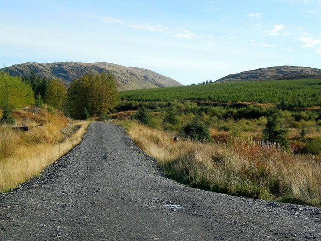 Galloway Forest Track Junction