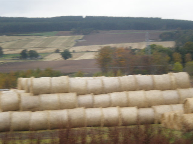 Fresh bales near Obsdale House