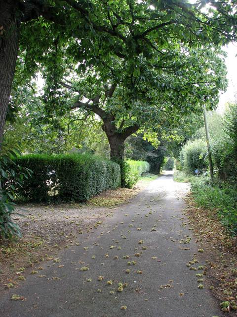 View south along Mill Lane