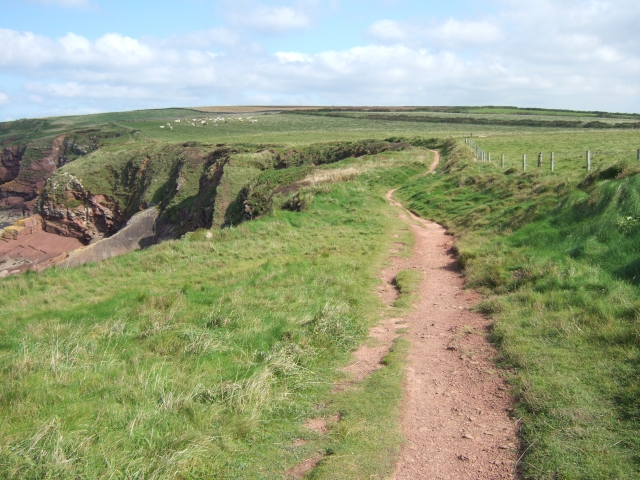 Coast path above the cliffs at Musselwick