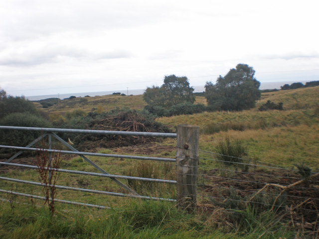 Gate to rough pasture north of Embo