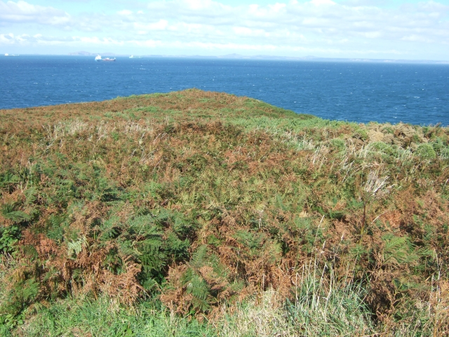 Scrubby headland near St Martin's