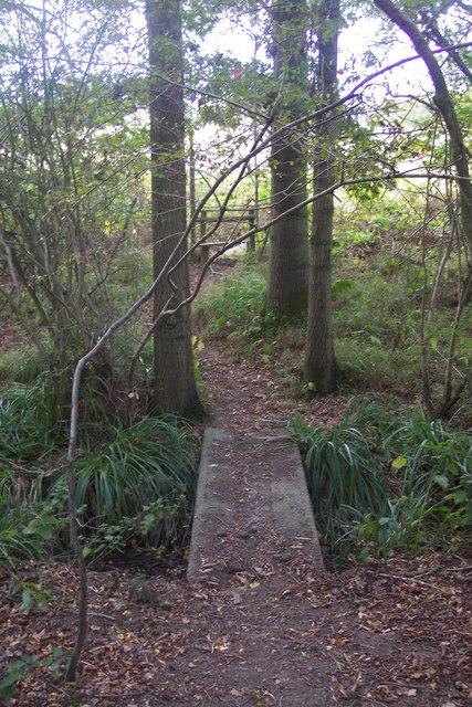 Footbridge near Hook Wood