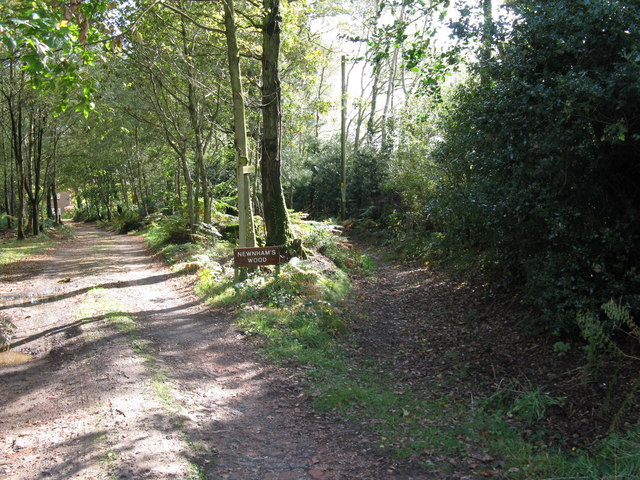 Bridleway from Newnham's Wood merges with track to Newnham's Wood house