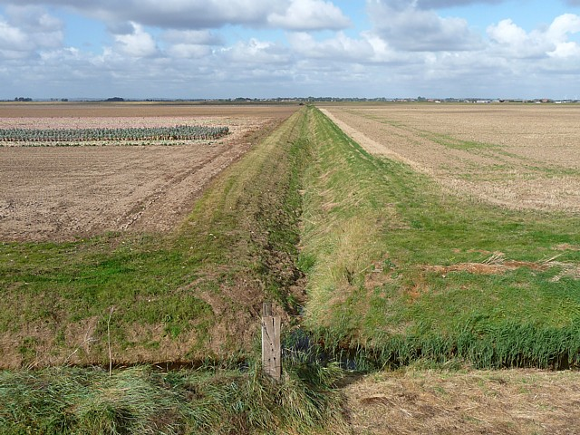 Farmland near Wainfleet (2)