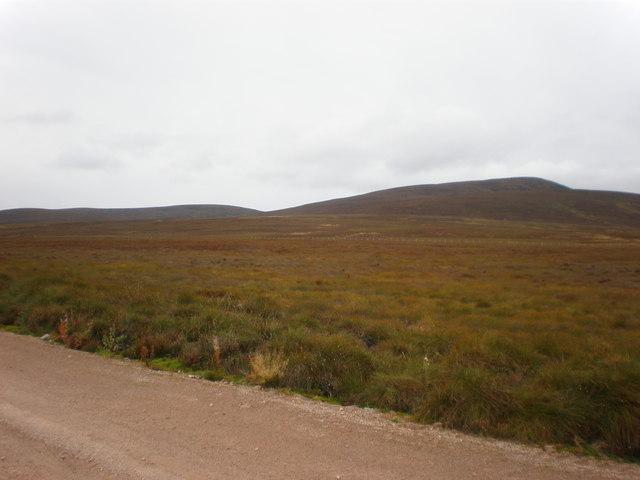 Moorland east of Wind Farm Road