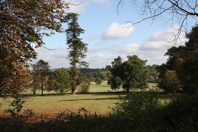 Scotney Castle parkland