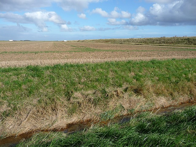 Farmland near Wainfleet (4)