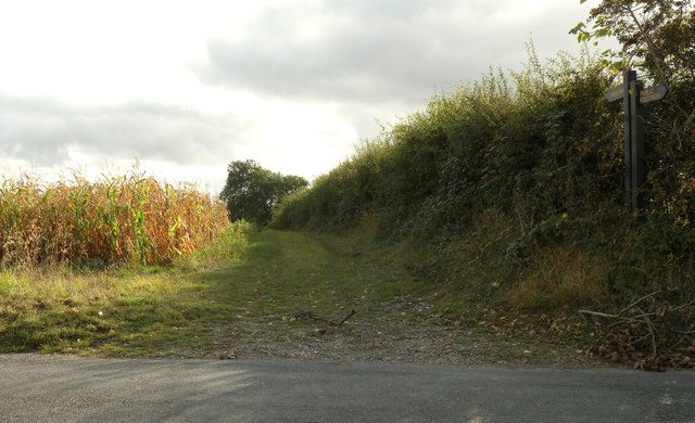 Bridleway by Royston Lane