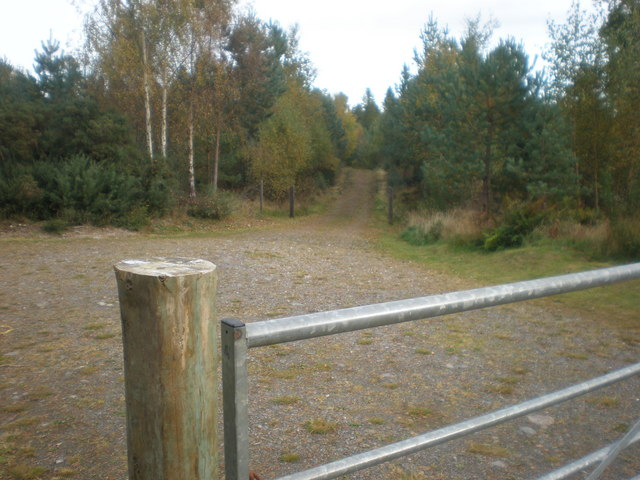Start of Camore Wood Exercise trail