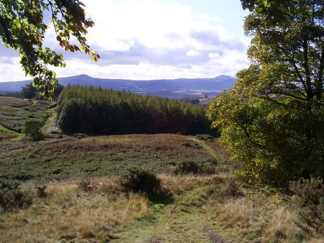 The Lomonds from Cairnie Hill