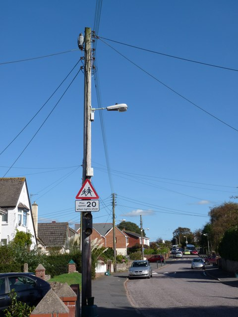 Wooden owl on telegraph pole in Chaddiford Lane