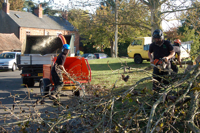 Shredding the brushwood from felled trees, Broadwell