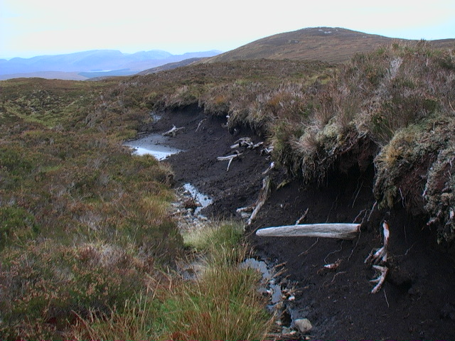 Peat bank and bogwood near Carn nam Fiadh near Rannoch