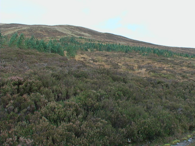 The western flanks of Meall a' Bhobuir