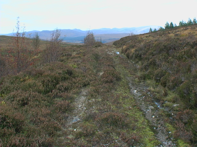 Looking north along the track between Garbh Meall and Meall a' Bhobuir