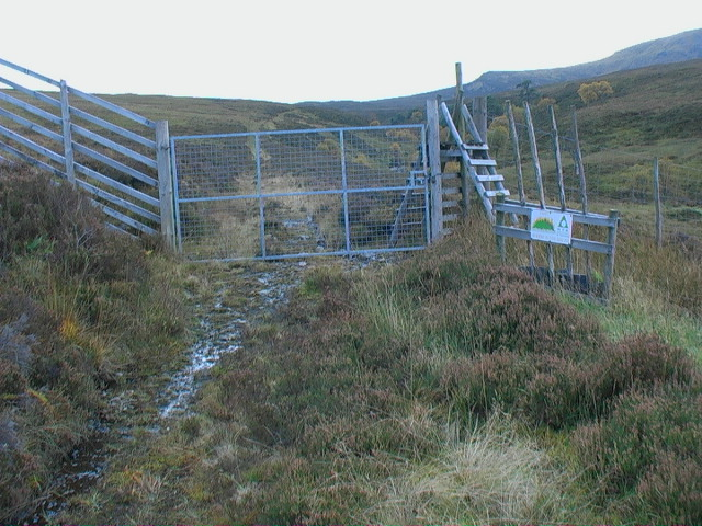 Forest security near Garbh Meall