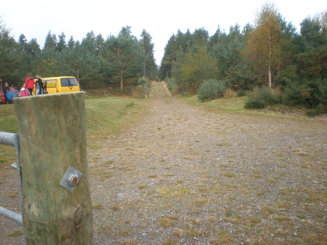 Start of Camore Wood Orientation class trail